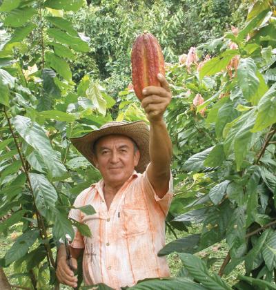 Cacao de Colombia